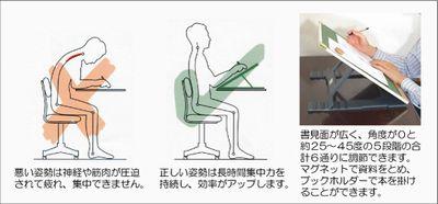 SB-posture.jpg
